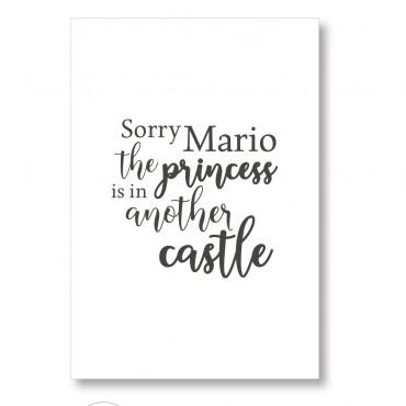 CUADRO SORRY MARIO